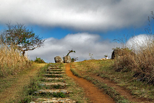Steps leading to jars on hilltop at Site 1 at Plain of Jars in Phonsavan, Laos